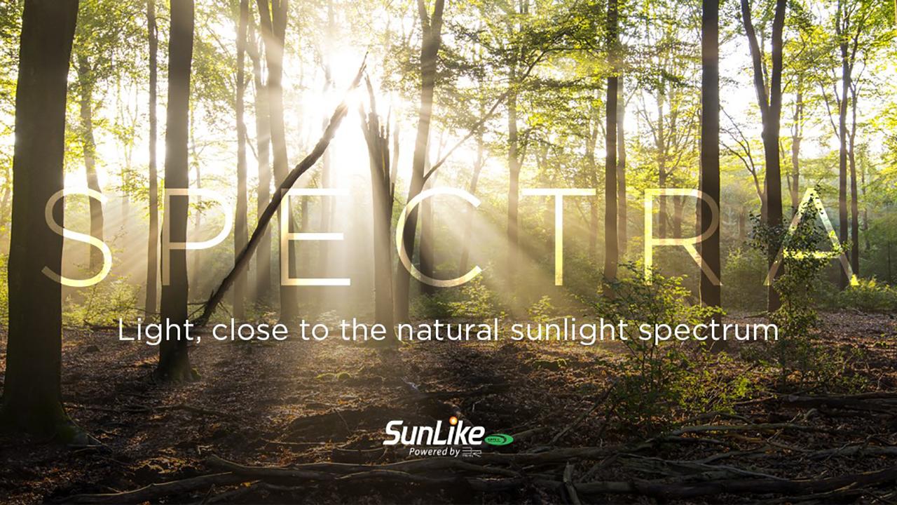 Plain Spectra