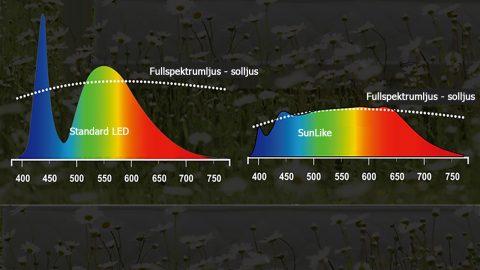 Fullspektrumljus